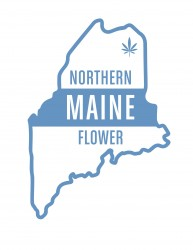 thumb_northern-maine-flower---outlined